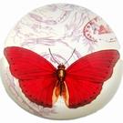 Presse-papier demi sulfure - Papillon rouge